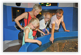 Aquarium & Museum in Hvide Sande, Bild 1